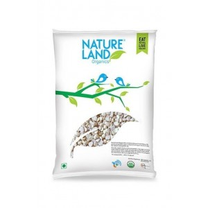 Natureland Organics Urad Washed Split