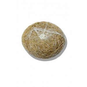 Ancient Living Vetiver Scrub