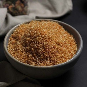 Evolve Roasted Quinoa Masala
