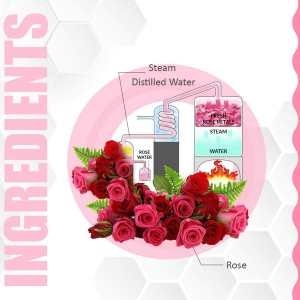 TNW - The Natural Wash ROSE WATER ingredients